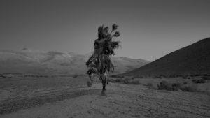 En nombre del Litio: la última voluntad de las comunidades originarias de los salares del norte argentino