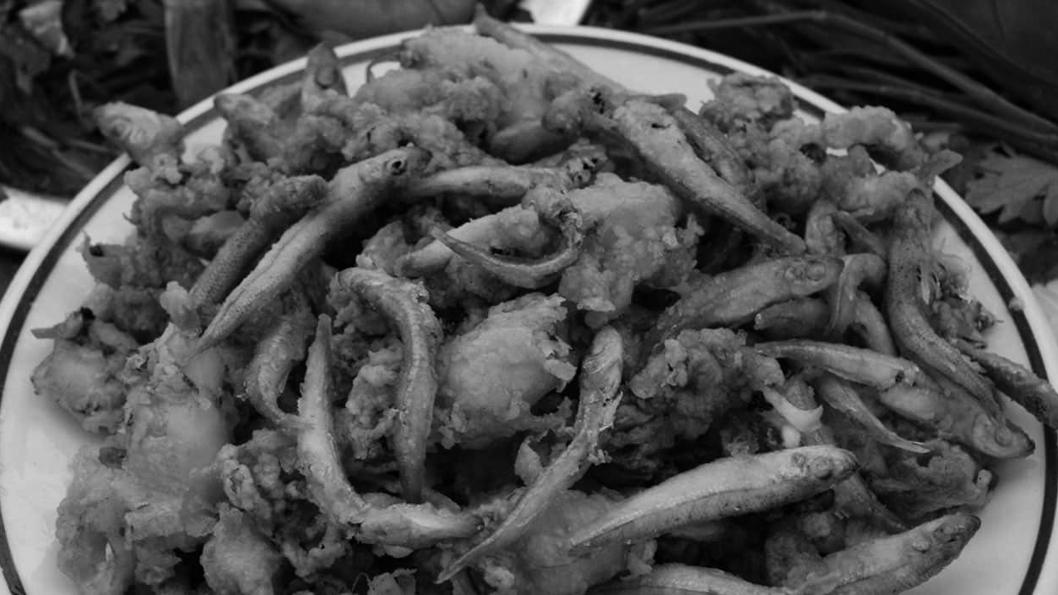 metales-peces-embalse-Río-Tercero-2
