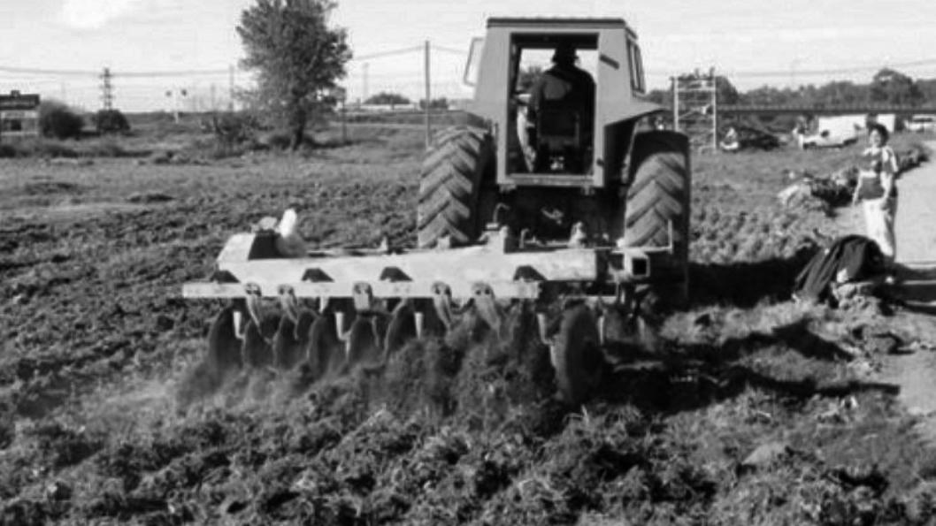 programa-agricultura-urbana-rosario-agroecología-6