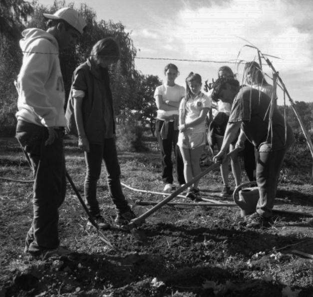 programa-agricultura-urbana-rosario-agroecología-8