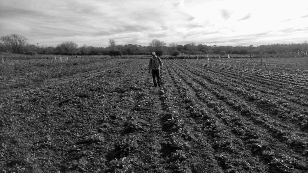 Agricultura-familiar-MTE-Cordoba
