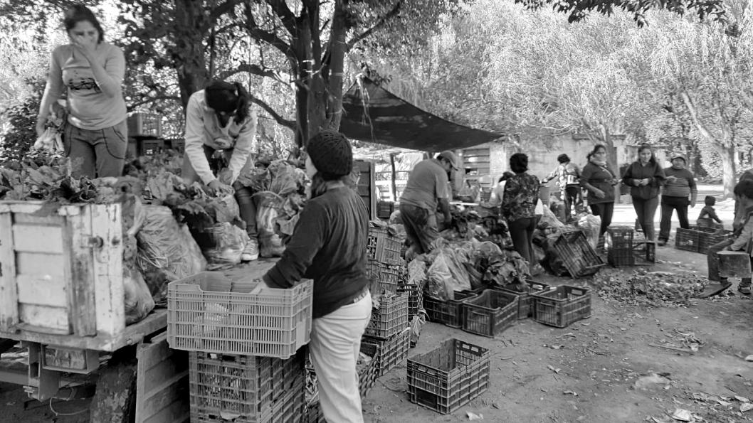 Agricultura-familiar-MTE-Cordoba2