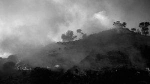 """""""En el modelo de desarrollo que hegemoniza Córdoba, el fuego equivale a negociados"""""""