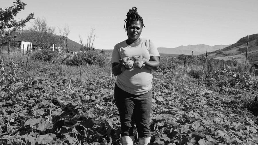 Sudafrica agricultura comunitaria la-tinta