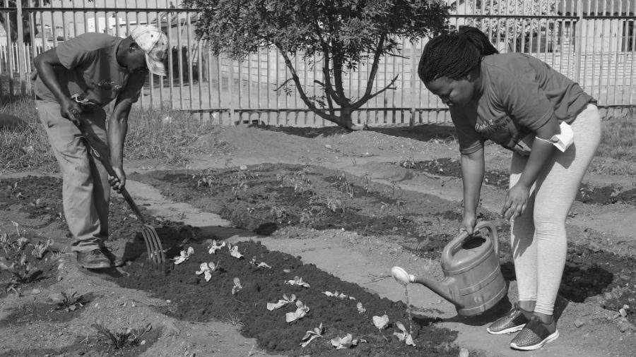 Sudafrica huertas solidarias la-tinta