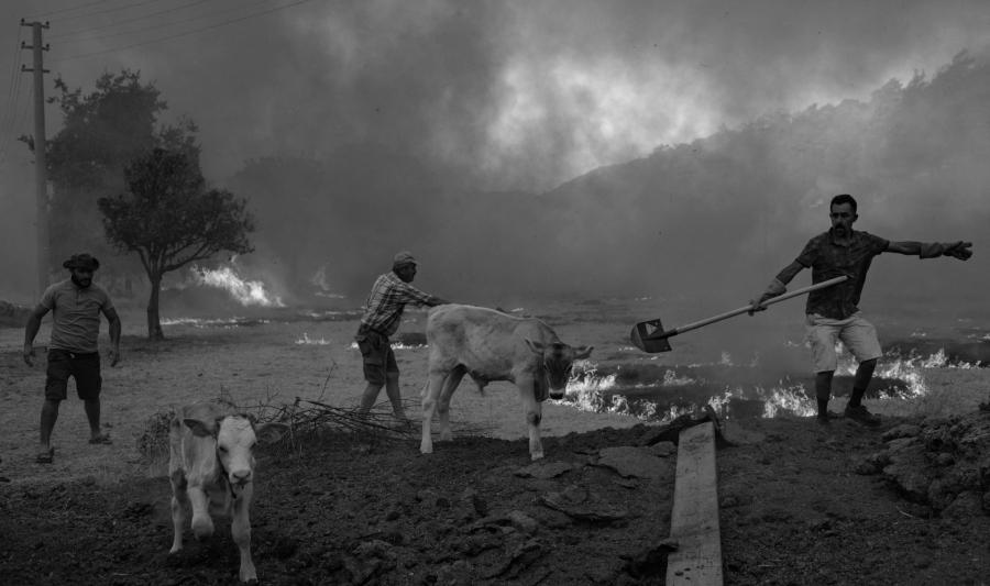 Turquia incendios campos la-tinta