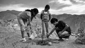 #MiPlanetaMisDerechos: una campaña para exigir el derecho a vivir en un mundo sano