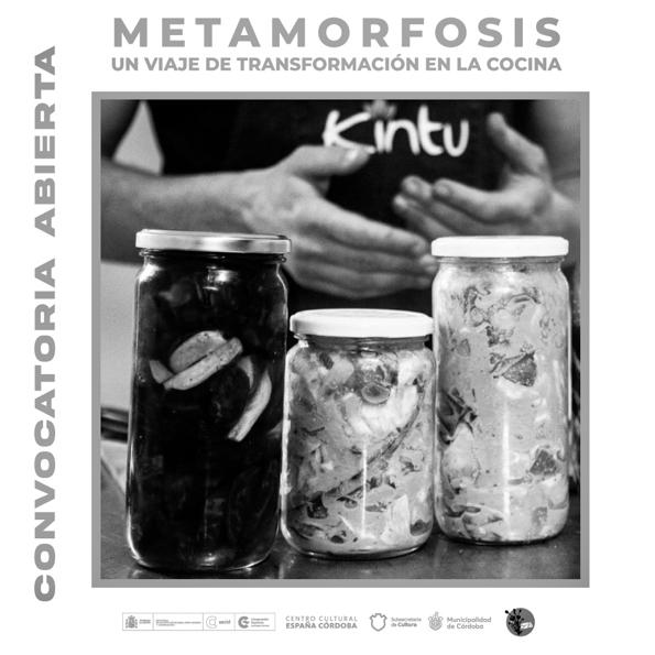 kintu-metamorfosis-taller-gastronomía-ccec-cocina-convocatoria