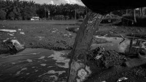 Centroamérica: reino del extractivismo impune