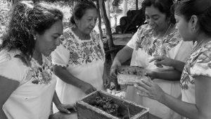 13 semillas zapatistas: independizarnos del Estado