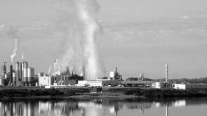 Uruguay Natural: del monocultivo a la contaminación industrial