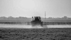 Microplásticos y herbicidas: juntos es peor