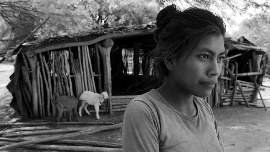 diccionario-wichi-lengua-pueblos-originarios