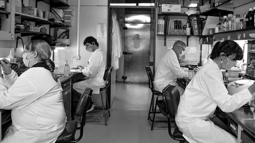 segunda-vacuna-CoroVaxG.3-CONICET-instituto-leloir